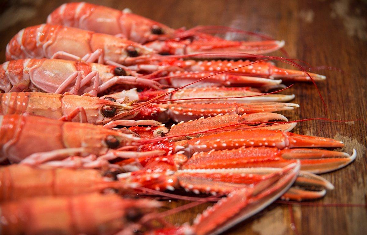Photographie Culinaire - Crustacés